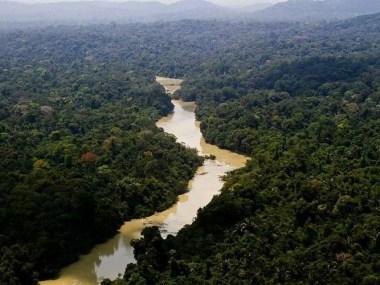 Ex- ministros divulgam carta aberta contra projeto que dispensa licenciamento ambientais