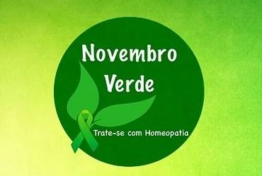 Movimento Novembro Verde