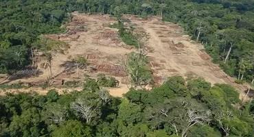 Projeto na Câmara derruba licenciamento ambiental e ameaça recursos naturais