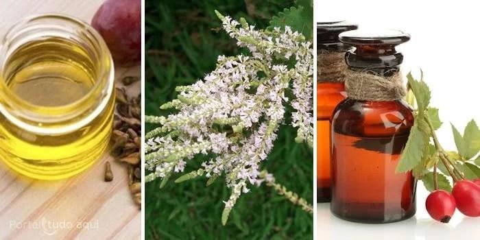 Óleo de semente de uva, flores de mirra e óleo de rosa mosqueta.