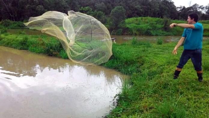viola-peixe-tarrafa-agua