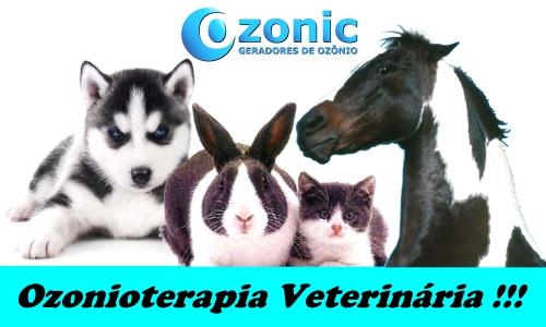 Ozonioterapia Veterinária !!!