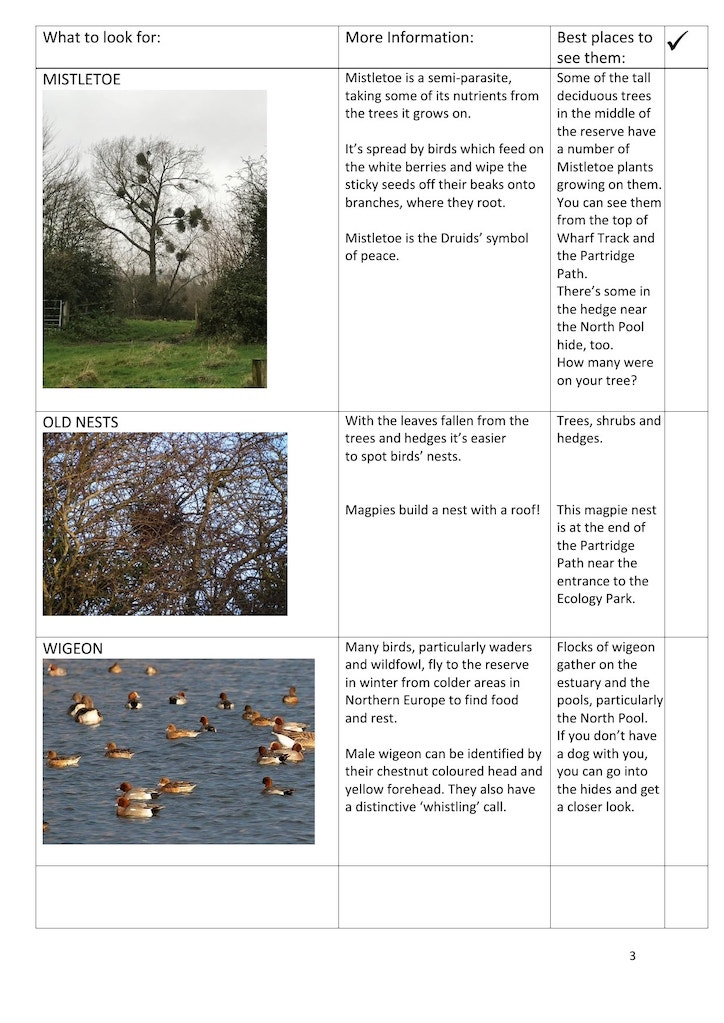 Winter trail page 3