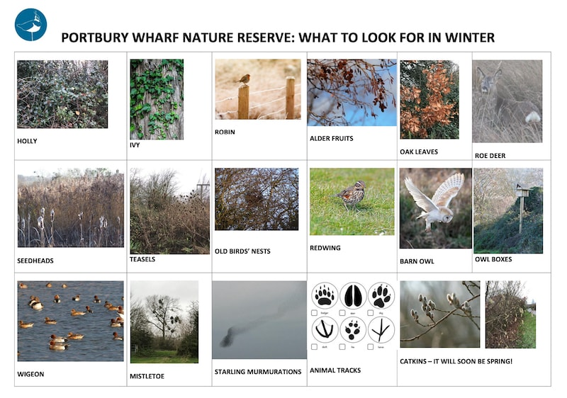 Pictures of what to look out for in winter