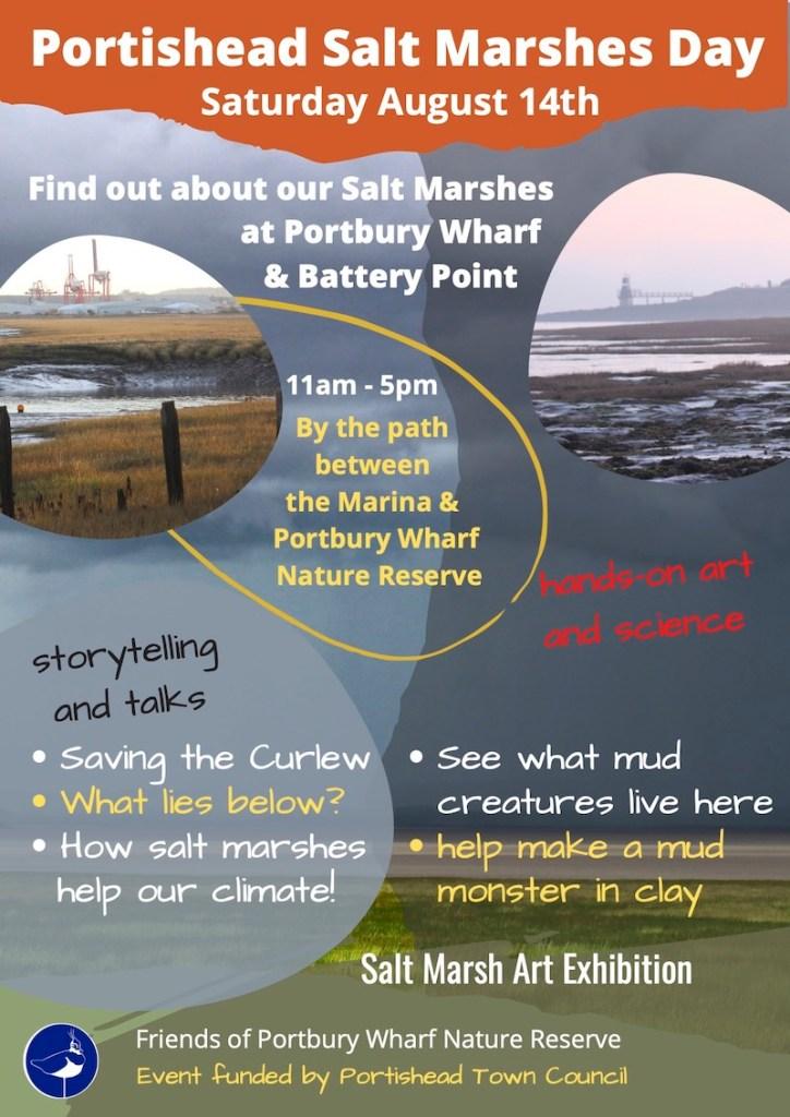 Portishead Salt Marsh Day