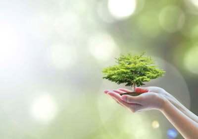 besparen verduurzamen