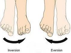 inversie-eversie