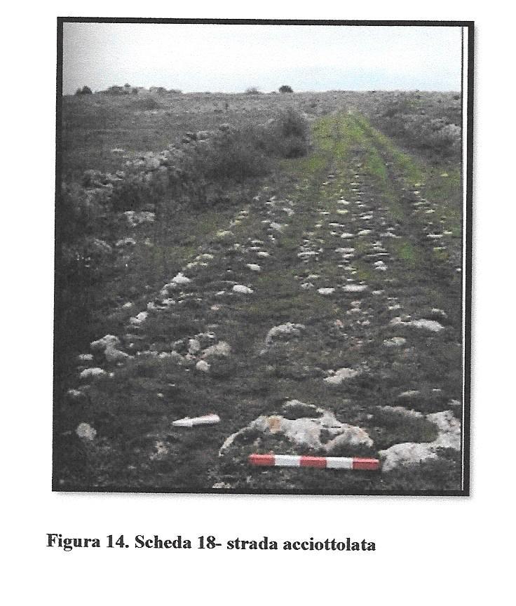 foto tesi giuseppe 017