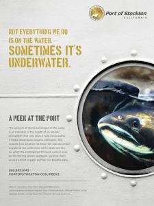 Sometimes-It-Is-Underwater