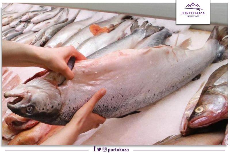 """أسماك """"موغلا"""" التركية على موائد 70 دولة"""