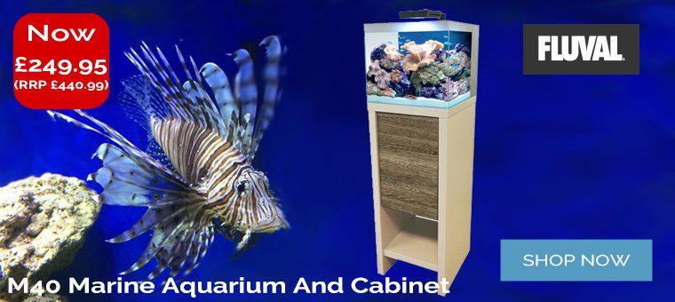 Fluval M40 Aquarium