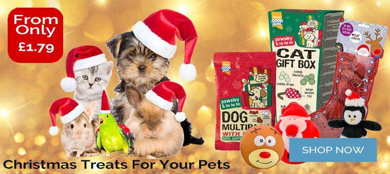 Pet Christmas Treats
