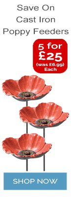 Poppy Feeder Offer