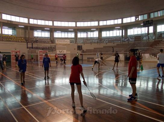 gare badminton