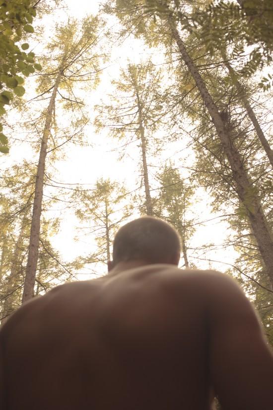 Daniel_van_Flymen_FOREST_005