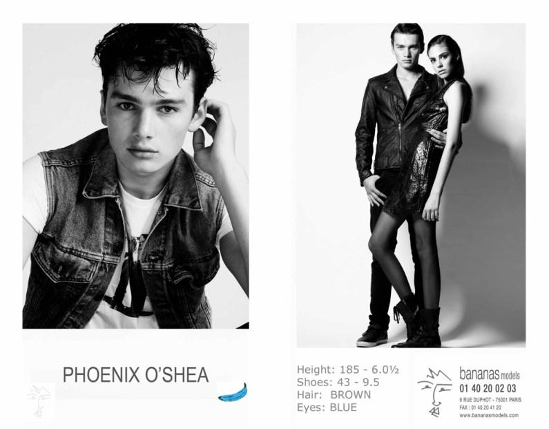 phoenix_o_shea2-copie