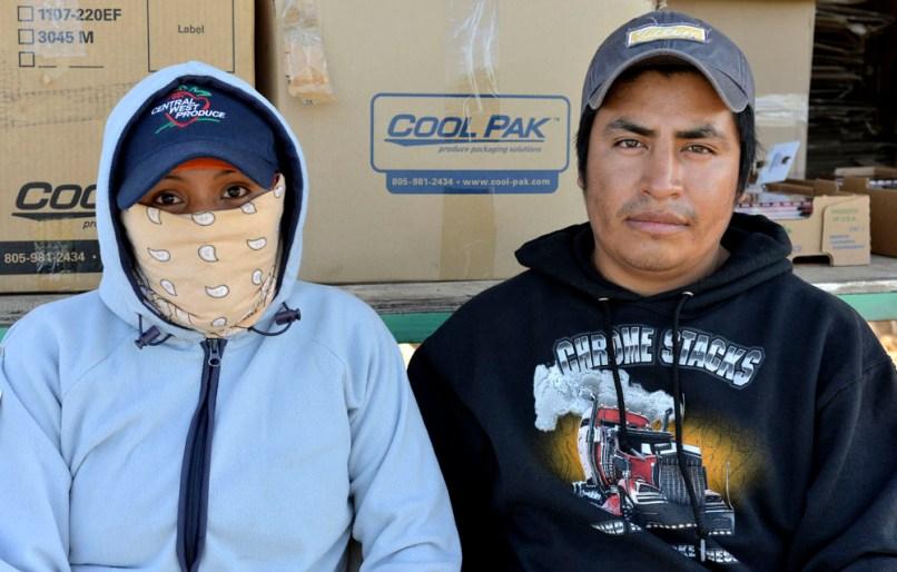 Mixteco couple at the strawberry fields, Oxnard, CA