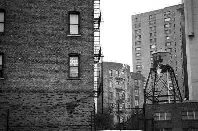 Photography: Cebe Loomis