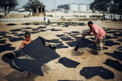 Villagers from the surrounding tanneries are often involved in the leather tanning process by working in factories or participating indirectly through menial jobs such as transporting leather from the factories to fields for drying as shown.
