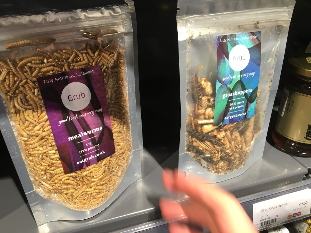 mealworms and grasshoppers!