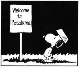 Snoopy - Welcome To Petaluma