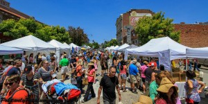 2014-Petaluma-Art-Garden-Festival-4-300x150