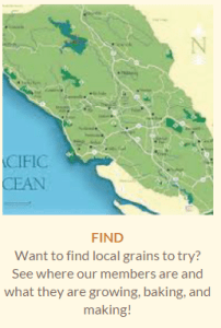 Where To Find Local Grains