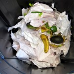 Simple Solutions – Starting a Compost Bin