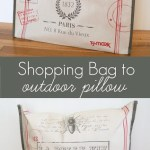 Outdoor Pillow from a Shopping Bag