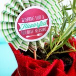 rosemary herb holiday gift 1