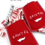 Santa's 'Stache Christmas Goodie Bags #SwellNoel