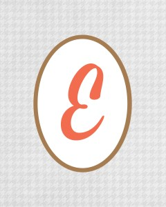Grey Monogram E