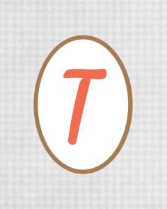 Grey Monogram T