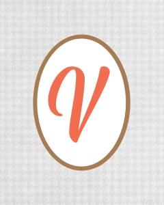 Grey Monogram V