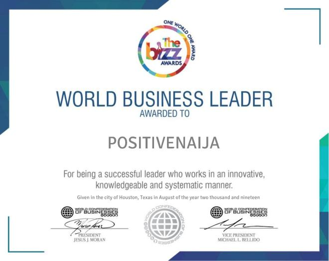 THE BIZZ Business Excellence