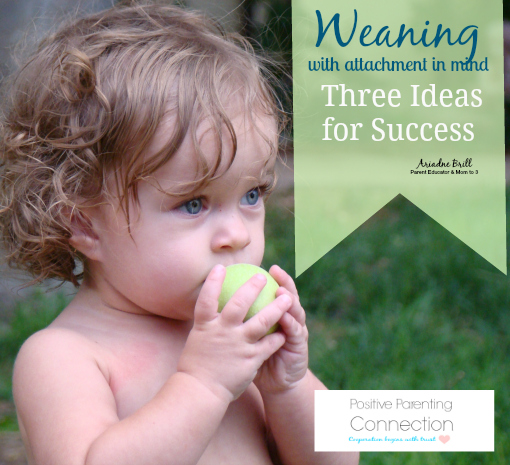 Weaning Gently: Three Special Ideas for Success