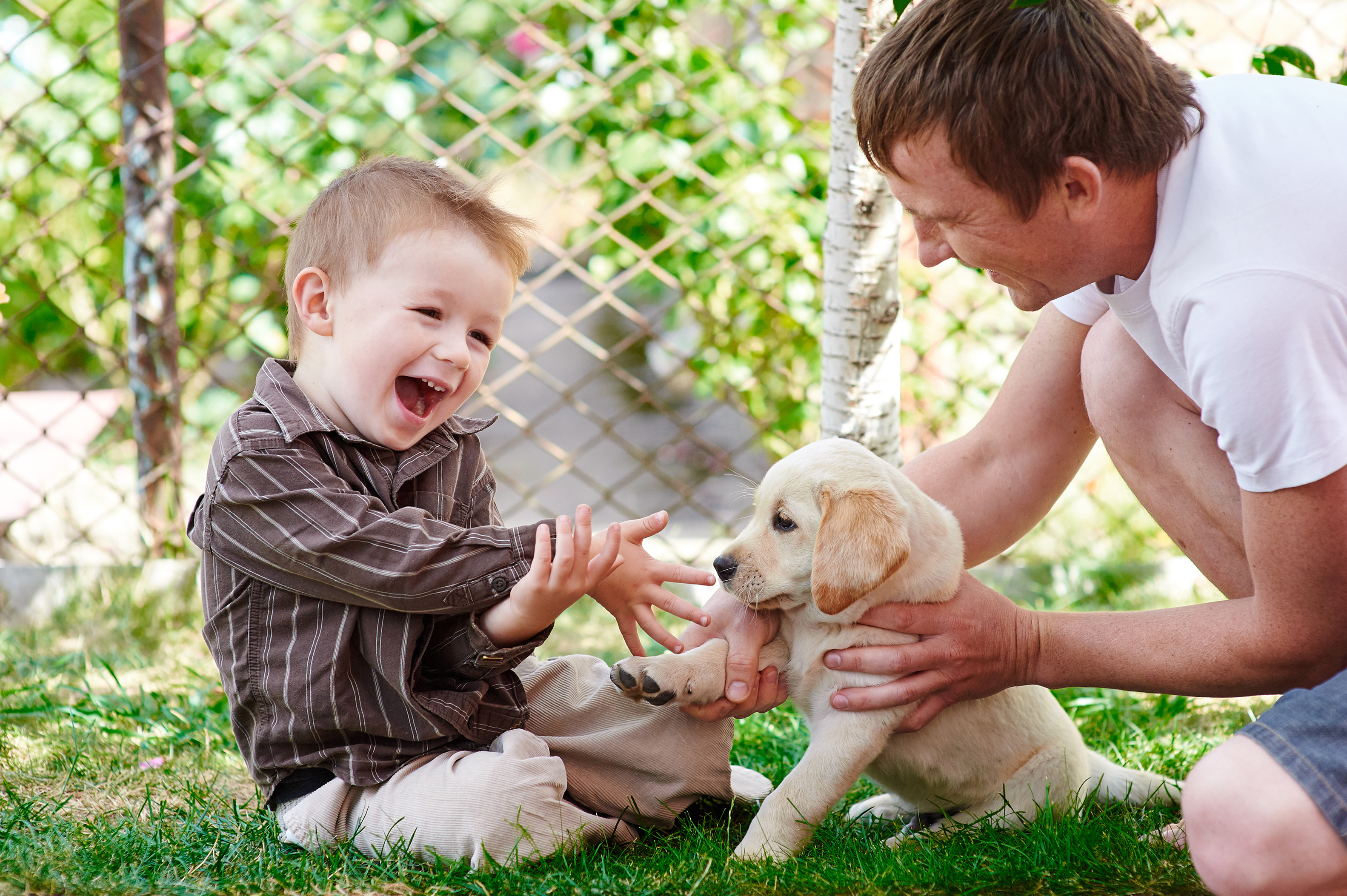 6 Tips to Help a Child that is Afraid of Dogs