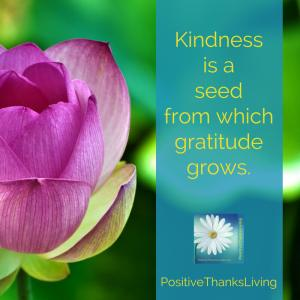 Kindness is a seed from which gratitude grows