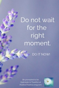 Do not wait for the mythical right moment - do it now #optimistic #thankful #positivethanksliving