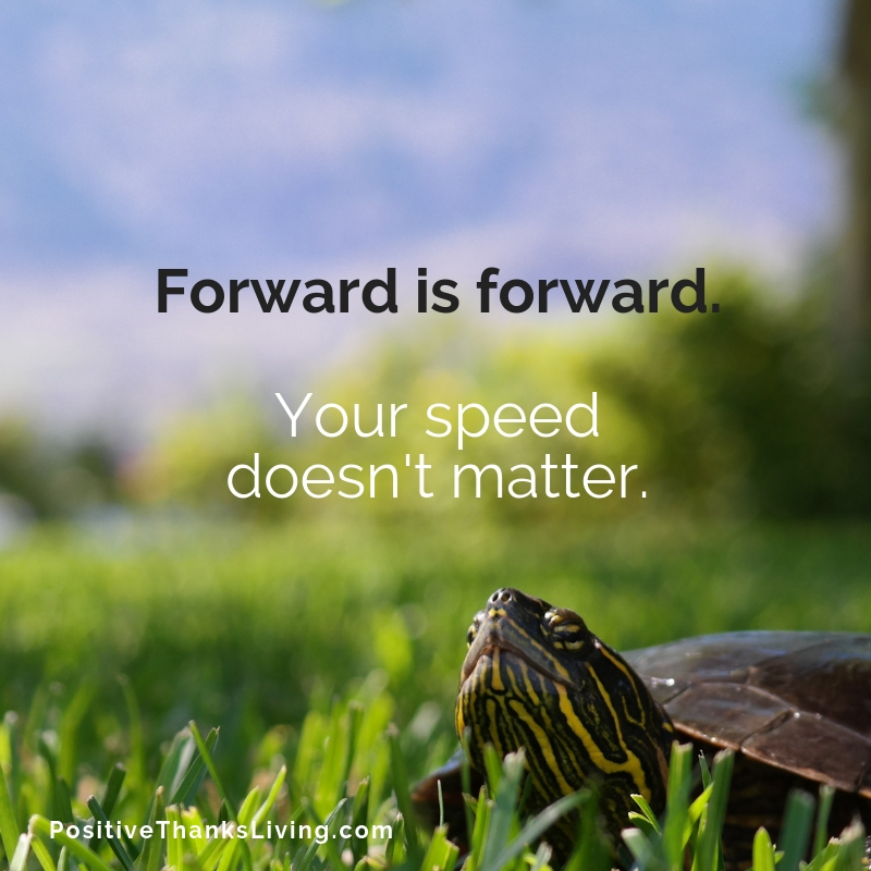Forward is forward - your speed doesn't matter. #positivethanksliving #positivityprompt #optimism #goals