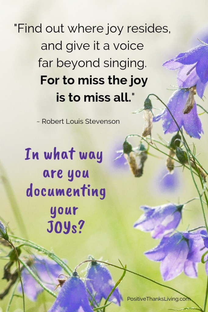 For the miss the joy is to miss all - in what ways are you taking action to document your joys?