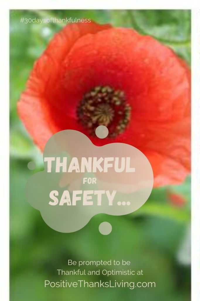 thankful for safety - who has provided for your safety - either mentally, emotionally or physically? Record their names in your Thankful Journal!