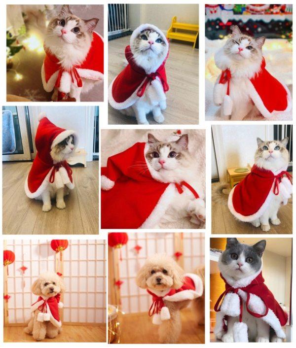 Vianočný kabátik s kapucňou pre domácich miláčikov 3