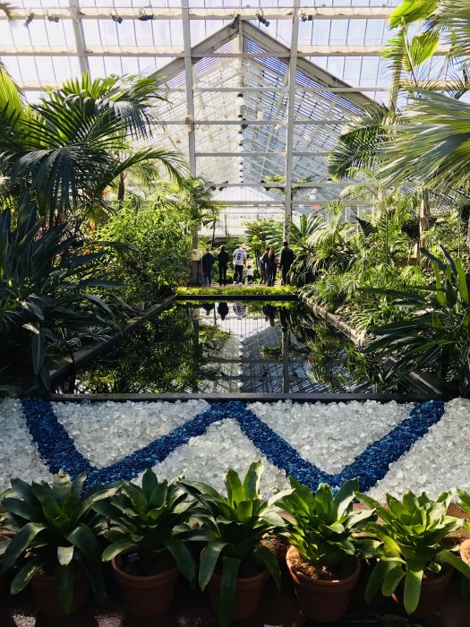 Garfield Park Conservatory in Chicago, Illinois