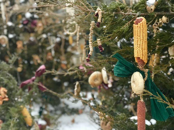 Lauritzen Gardens homemade bird feeders, Omaha, Nebraska