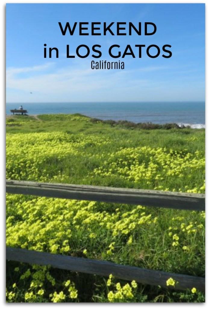 weekend in Los Gatos