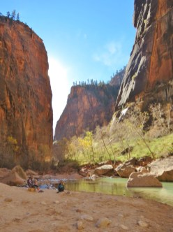 Looking Up in Zion National Park