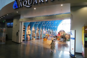 Outstanding Indoor Attractions in Utah