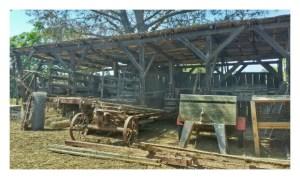 Stein Family Farm