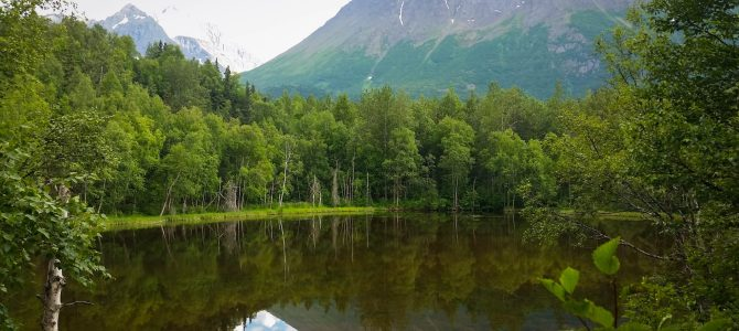 North of Anchorage: Adventure Closer Than You Think!